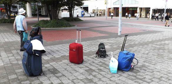 Поездки за границу опять в фаворе у жителей Приморья