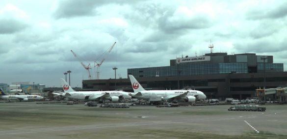 Japan Airlines организовывает вывозные рейсы между Токио и Владивостоком