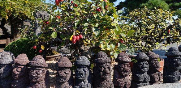 Остров Чеджу: нужна ли спешка для восстановления туротрасли