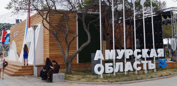 Северная тайга и грибы мацутакэ: Амурская область готовится к JATA