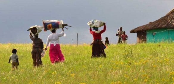 Владивосткоцам предлагают отправиться в небольшое путешествие в ЮАР
