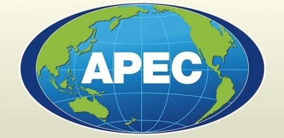 Электронные визы предложено распространить на все страны АТЭС