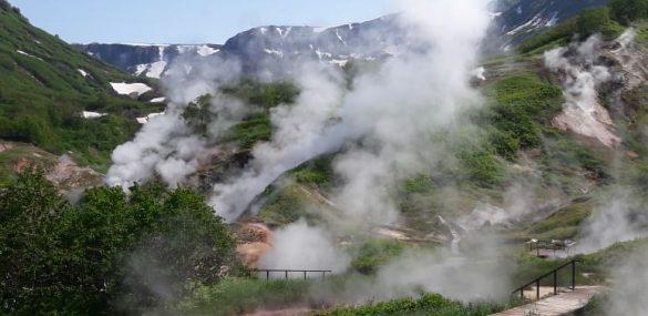 WWF призывает поддержать развитие экотропы в Командорском заповеднике