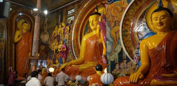 Чартеры на Шри Ланку предлагают хабаровчанам