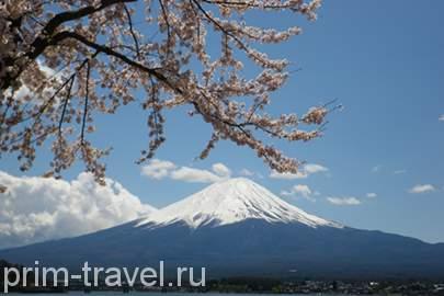 Фудзи в этом году будет недоступна для туристов