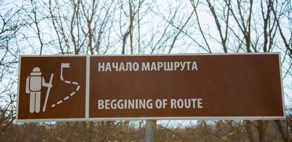 Остров Попова сделают удобным для туристов и отдыхающих