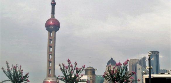 Более 7 млн. туристов посетило Шанхай в майские праздники