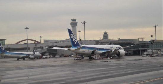 После полугодового перерыва авиакомпания ANA возобновит полеты на Гавайи