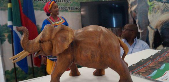 Туризм может стать связующим звеном в отношениях между Приморьем и ЮАР