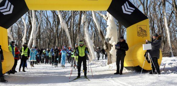 Бесплатный отдых в массы: лыжная трасса и прокат снаряжения на Русском