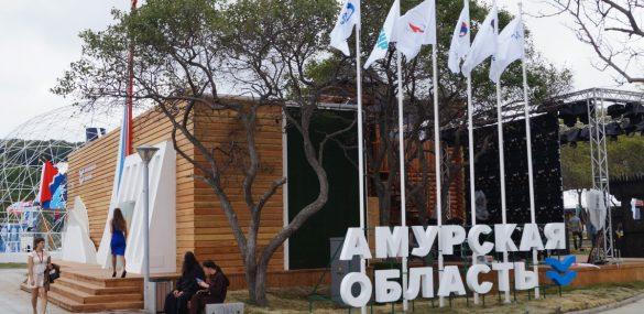 Космофест, джимхана, отдых под гитару, ретро-ралли и Бакалдын: предложения туристам от Амурской области