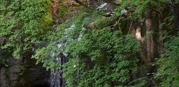 В Приморье благоустроят Кравцовские водопады