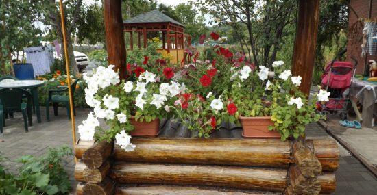 Сельский туризм в Приморье получит поддержку из бюджета