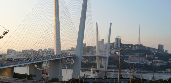 Упрощенный визовый режим при въезде через Владивосток коснется только 18 стран