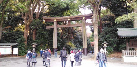 Число российских туристов, посетивших Японию в январе, увеличилось на треть