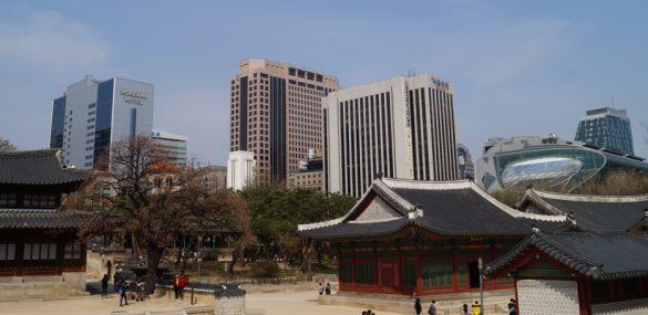 Турбизнес Приморья отправился за новыми партнёрами и туристами в Республику Корея
