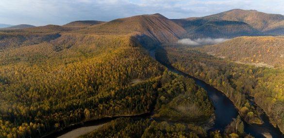 Нацпарк «Бикин» в Приморье включили в список Всемирного наследия ЮНЕСКО