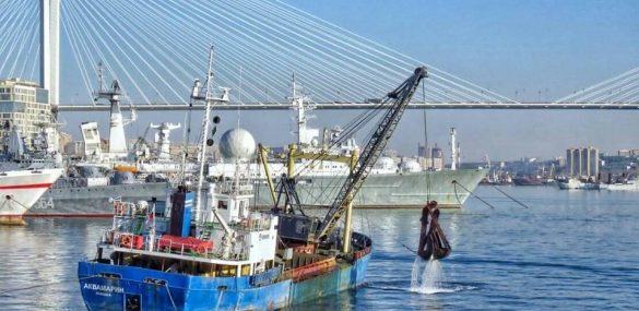 Отличный подарок туристическому Владивостоку:  завершено дноуглубление в порту