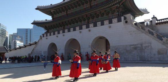 В Приморье НОТК ищет активных блогеров для поездки в Южную Корею