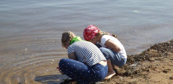 Для юных туристов в Приморье разработают новые туристские маршруты