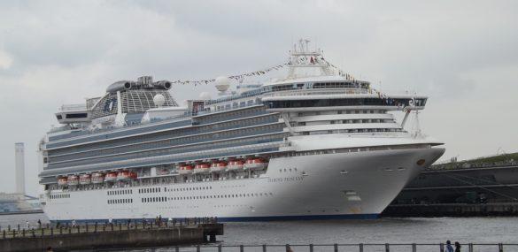 Семь россиян с лайнера Diamond Princess сейчас на карантине в Приморье