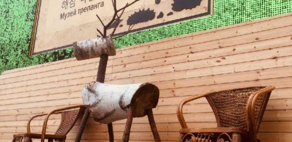 Более 100 тысяч туристов посетили Музей трепанга во Владивостоке